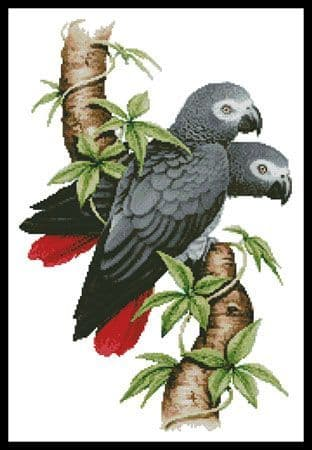 African Grey Parrots by Artecy printed cross stitch chart